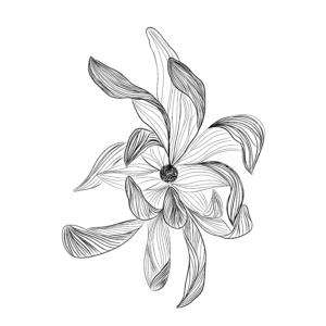 Floral 11-1